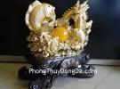 Cá chép vàng rồng vàng cuộn H295G