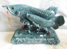 Cá kim long mẫu tử xanh ngọc- tụ tài kim long K090M