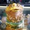 Thiềm thừ vàng, đế thủy tinh K147M