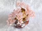 Cây tài lộc thạch anh hồng nhỏ KC090