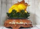 Thiềm thừ vàng ngọc lưu ly trên bụi sen đế gỗ xoay khủng LN086