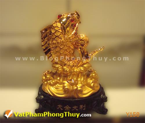 01f2316feby Y158.jpg Cá Phong Thủy – biểu tượng của phú quý, giàu sang, may mắn với hơn 20 kiểu dáng đẹp