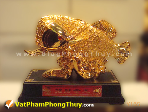0a2a7e090cy Y165.jpg Cá Phong Thủy – biểu tượng của phú quý, giàu sang, may mắn với hơn 20 kiểu dáng đẹp