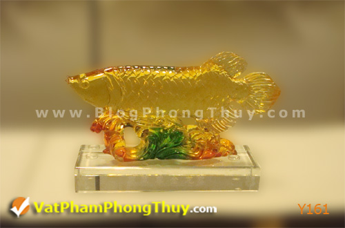 1f426cdc29y Y161.jpg Cá Phong Thủy – biểu tượng của phú quý, giàu sang, may mắn với hơn 20 kiểu dáng đẹp