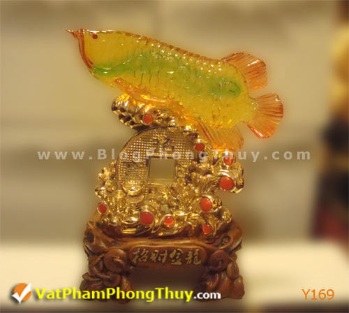 250d1667e2y Y169.jpg Cá Phong Thủy – biểu tượng của phú quý, giàu sang, may mắn với hơn 20 kiểu dáng đẹp