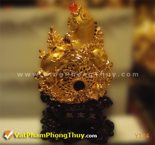 414985e0dfy Y174.jpg Cá Phong Thủy – biểu tượng của phú quý, giàu sang, may mắn với hơn 20 kiểu dáng đẹp