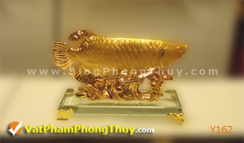 97ab485831y Y162.jpg Cá Phong Thủy – biểu tượng của phú quý, giàu sang, may mắn với hơn 20 kiểu dáng đẹp