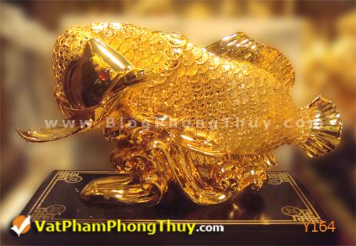 c9ac5cdbc0y Y164.jpg Cá Phong Thủy – biểu tượng của phú quý, giàu sang, may mắn với hơn 20 kiểu dáng đẹp