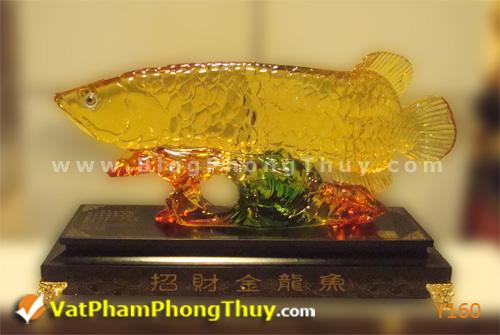 d5f66a77f8y Y160.jpg Cá Phong Thủy – biểu tượng của phú quý, giàu sang, may mắn với hơn 20 kiểu dáng đẹp