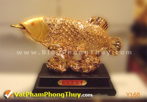 dda247f39dy Y168.jpg Cá Phong Thủy – biểu tượng của phú quý, giàu sang, may mắn với hơn 20 kiểu dáng đẹp