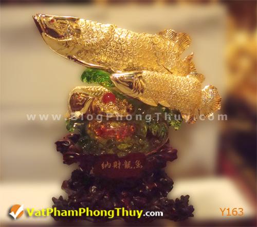 f7654c3cb9y Y163.jpg Cá Phong Thủy – biểu tượng của phú quý, giàu sang, may mắn với hơn 20 kiểu dáng đẹp