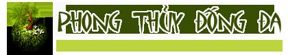 Phong Thủy Đống Đa – PhongThuyDongDa.com