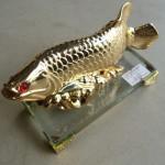 H292 150x150 Cá kim long vàng nhỏ H292G