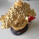 h510 150x150 Cây nén vàng châu báu H510G