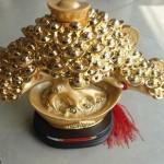h510 2 150x150 Cây nén vàng châu báu H510G