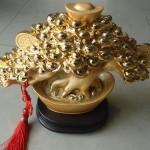 h510 3 150x150 Cây nén vàng châu báu H510G