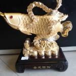 DSC02344 150x150 Cá kim long vàng đống tiền H284G