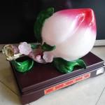 DSC02351 150x150 Đào trắng hồng   phước thọ đào tiên H340G
