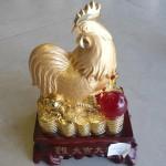 h381 5 150x150 Gà vàng châu đỏ H381G