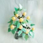 kc010 21 150x150 Cây quất trái ngọc Hoàng long , lá đông linh KC010
