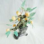 kc0101 150x150 Cây quất trái ngọc Hoàng long , lá đông linh KC010