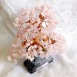 kc021 1 150x150 Cây thạch anh hồng chậu cao KC021