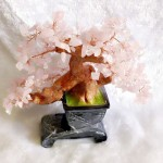 kc021 150x150 Cây thạch anh hồng chậu cao KC021