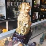 c018 1 150x150 Chó vàng bên như ý C018A